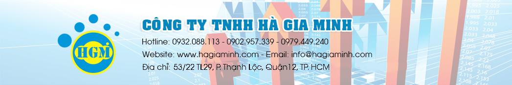 Sản xuất túi vải, Thiết kế Website, Hosting, Domain, SSL